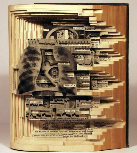 Book-Sculptures-by-Brian-Dettmer_12