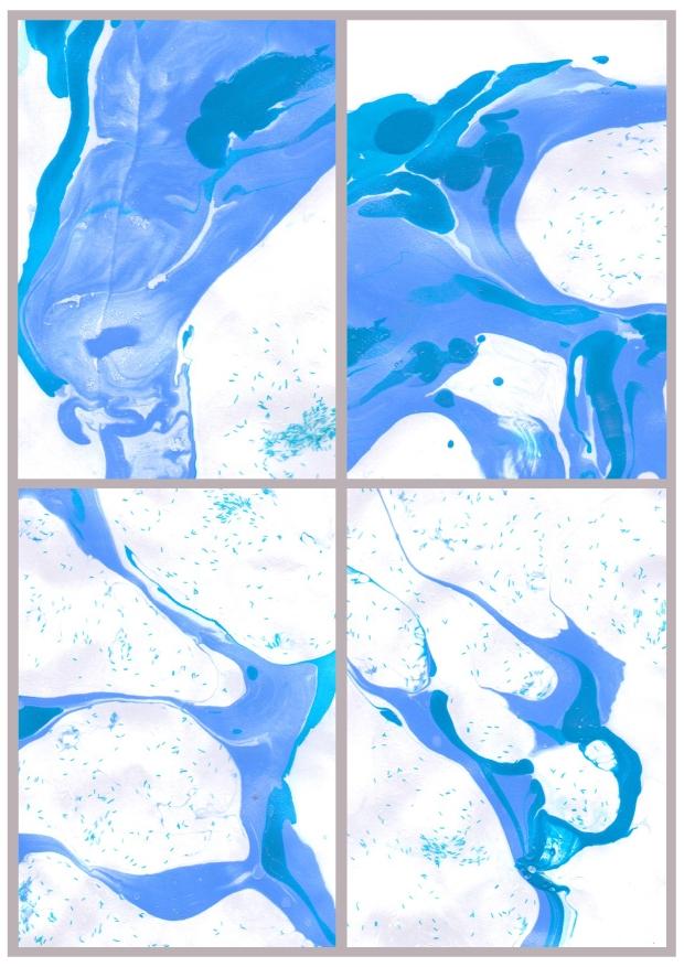 Blue Marble Prints